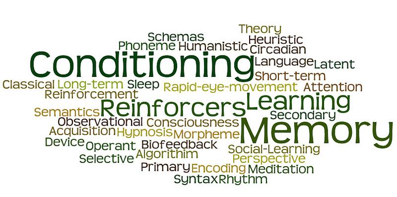Expandiendo el vocabulario