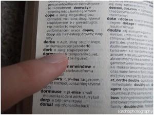 busqueda en diccionario
